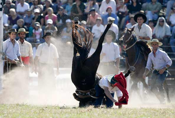gaucho is unseated during Criolla Week celebrations in Montevideo