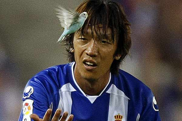 Espanyol's Shunsuke Nakamura watches a bird fly during the match against Liverpool as part of the inauguration of Espanyol's new Cornella-El Prat stadium near Barcelona.