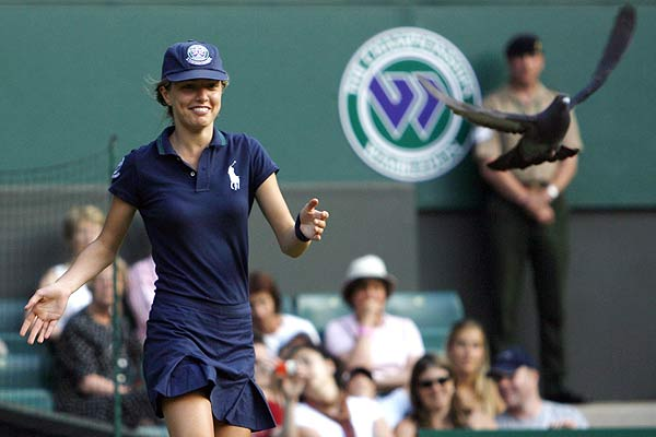 A ball-girl chases away a pigeon which landed during a match between Switzerland's Stanislas Wawrinka and Croatia's Mario Ancic at the Wimbledon tennis championships.