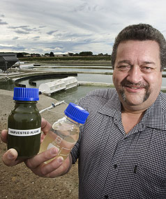 SEWAGE TO FUEL: Solray director Wayne Harpur, of Invercargill, holds a bottle of  wastewater algae and a bottle of fuel. His company, Solray Energy, converts human sewage into crude oil.