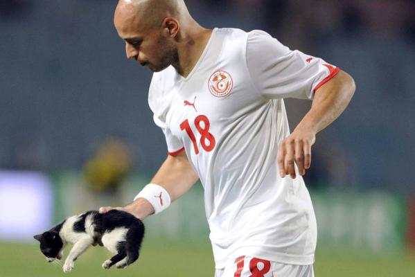 Tunisia's Yassine Mikari carries a cat from the pitch during a pre-World Cup friendly football match against France in Rades stadium near Tunis.