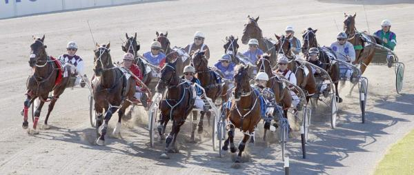 The 2010 NZ Trotting Cup field rounds the final bend.