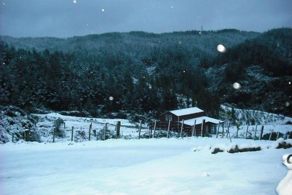 Snow in Whitemans Valley, north of Wellington.