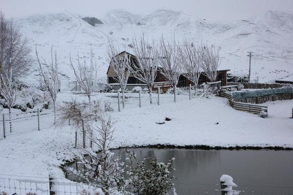 Snow covers the ground outside of Taihape in the North Island.