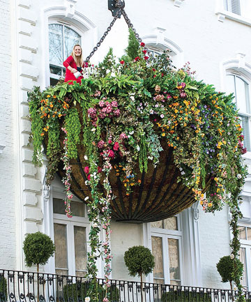 Hanging Gardens of Paddington