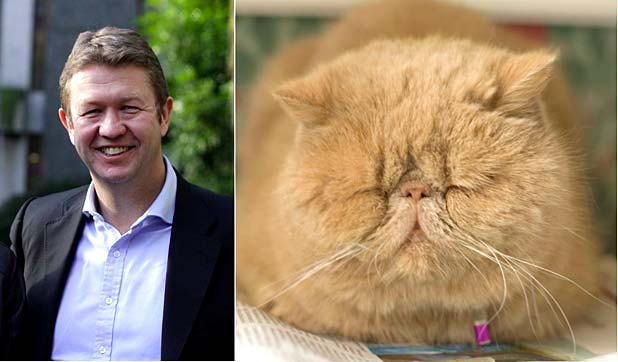 David Cunliffe, cat