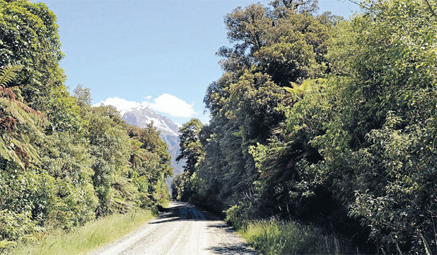 Hollyford Road
