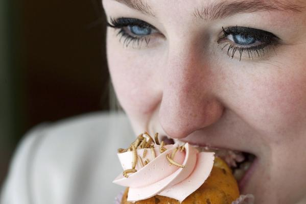 Margot van Rooyen, a student at the University of Wageningen, eats a cupcake made of insects the launch of a new Dutch cookbook, The Insect Cookbook.