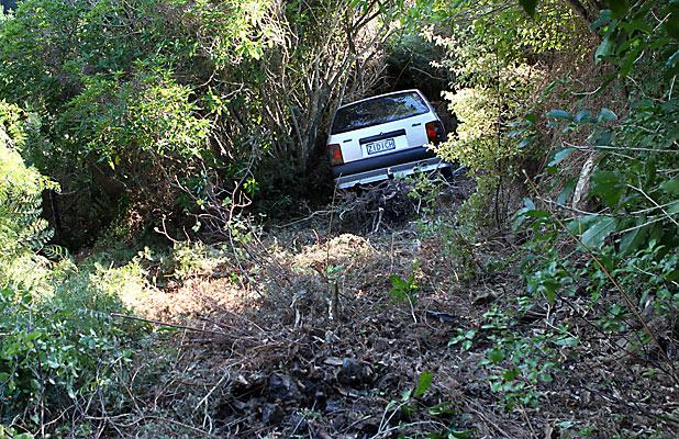 Car in bush