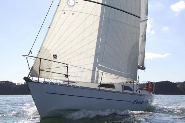 Whiting 29