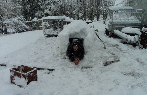 Oxford igloo
