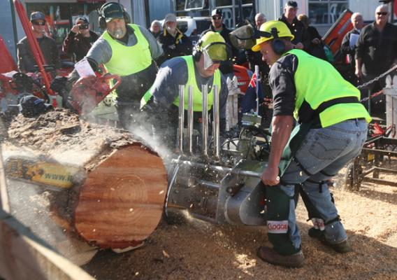 Chainsaw V8 Demo by Murray Raynel ,