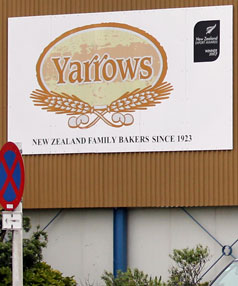 yarrows stand