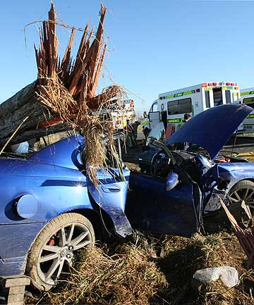 Two men survived this single car crash that severed a power pole near Lochiel.