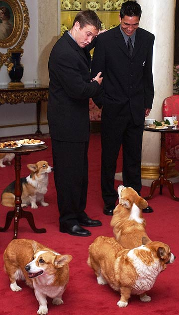 All Black Andrew Mehrtens introduces young teammate Regan King to one of Her Majesty Queen Elizabeth II corgies at an afternoon tea for the team at Buckingham Palace in November 2002.