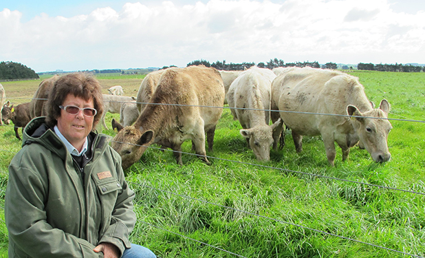 NOTABLE FIRST: Mary Kilsby's and some of her murray grey cattle. The breed is prized by dairy farmers for their easy calving ability.