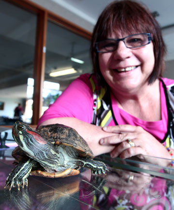 Tainui Rest Home's Anne Mattson with the home's pet turtle Rocky