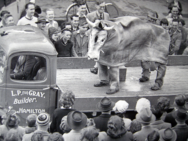 ORIGINAL MASCOT: Mooloo made her first appearance at a Ranfurly Shield game in 1953 and was a regular at Ranfurly Shield parades through the 50s and 60s.