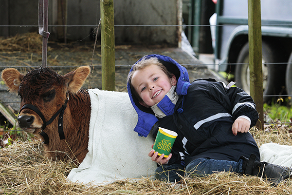 FARM FRIENDS: Lucas Devine, of Puketaha School, with Little Red, above.