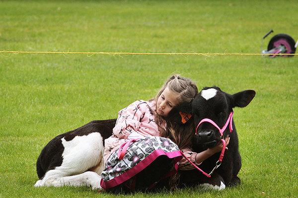 CALF CUDDLE: Tayla Hansen, 8, of Orini Combined School, with Buttercup.