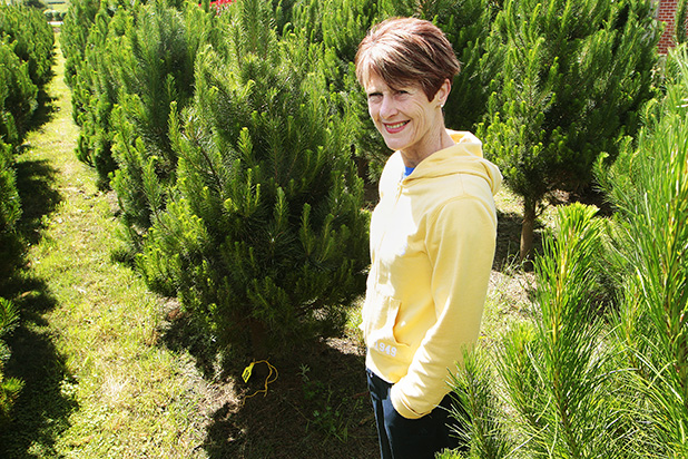 YULE DO NICELY: Marie-Therese Borland picks the perfect, pear-shaped tree to become part of the family tradition this year.