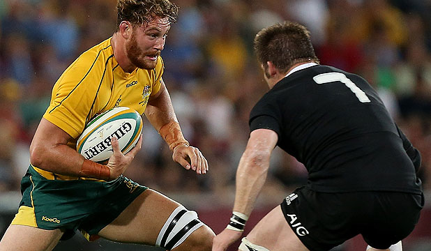 'IT'S JUST FOOTBALL, I SUPPOSE': Scott Higginbotham of the Wallabies runs the ball at Richie McCaw during this year's Bledisloe Cup test in Brisbane.