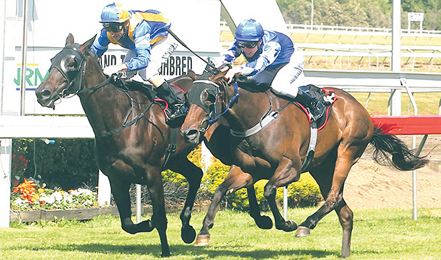 Lady Kipling (Opie Bosson), inner, fights back to beat Miss Pelear in Saturday's Gr II Auckland Thoroughbred Breeders' Stakes at Pukekohe.