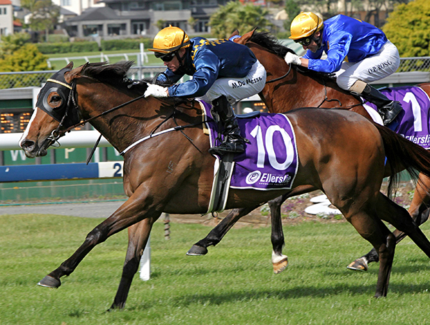 HIGH FLYER: Viadana (Mark Du Plessis) wins Saturday's Gr III Eagle Technology Stakes at Ellerslie.
