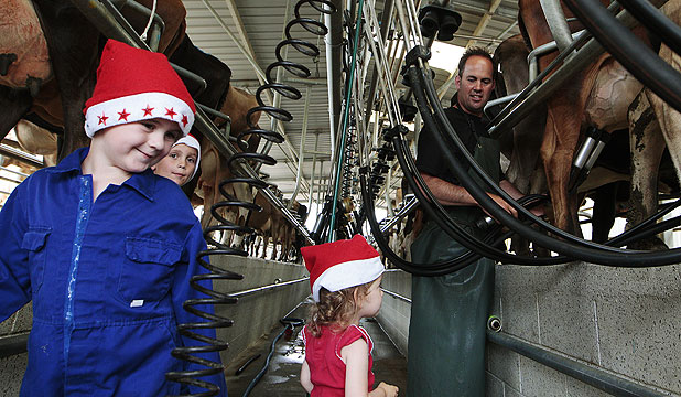 FAILY AFFAIR: From left, Max, 4, Harvey, 8, and Josie, 2, help dad Scott Mitchell with the milking.