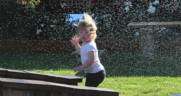 SPRINKLE TIME: Sandra Lapworth captured this shot of her 16-month-old experiencing a sprinkler for the first time.