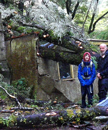 Tramper Mark Austin and his son Tama survey the damage at Rockburn Hut after a tree fell through the roof.