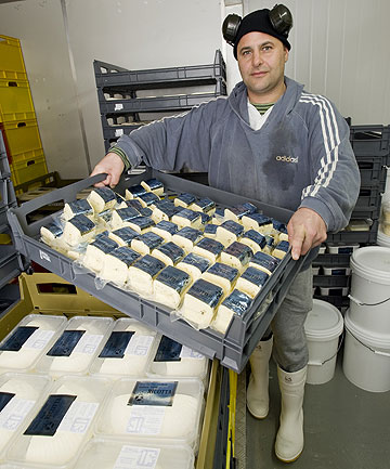 EDUCATOR: Michael Matsis at his cheesemaking business, Zany Zeus, in Lower Hutt.
