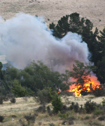 Homestead fire near Ranfurly