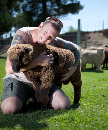Greg Lambert is happy to be reunited with Idea Services' pet sheep.