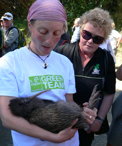 This weekend 10 kiwi were released back onto the