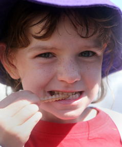 Local Hokitika lass Emily Garside, 6, was determined to try a live huhu grub for the first time, putting hardy lads to shame with her brave chomping.