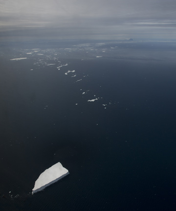 Sea ice breaks off from the Antarctic ice shelf.