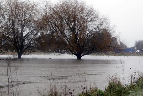 Flooded pasture in north Canterbury
