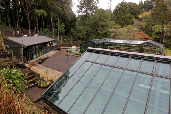 Pukekura Park fernery upgrade