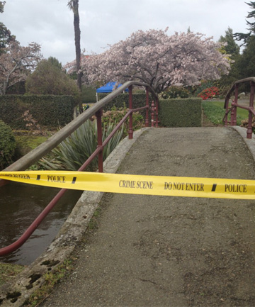 Body found in Otepuni Gardens