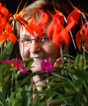 oy Wray, national vice-president of the NZ Orchid Council