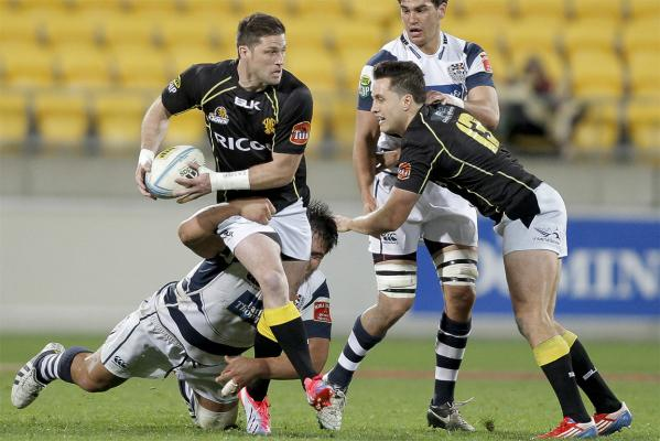Wellington v Auckland gallery