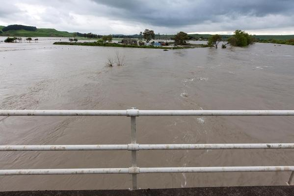The Whanganui River in flood.