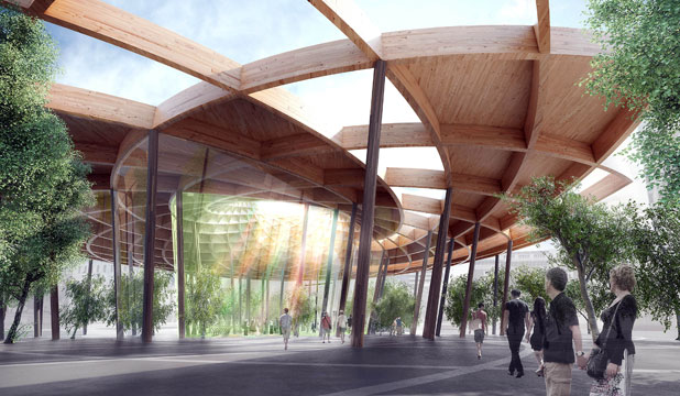 Christchurch 'living cathedral' plans