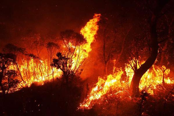 nswfire3