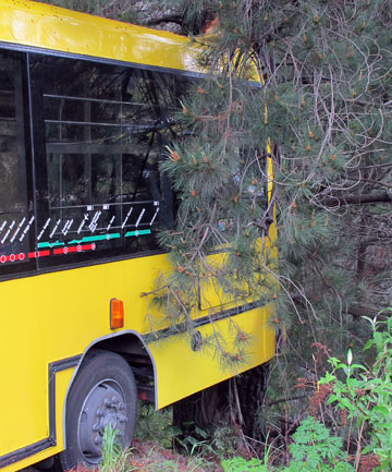 Bus that nearly plunged into Shotover River