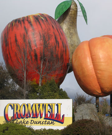 Cromwell Fruit