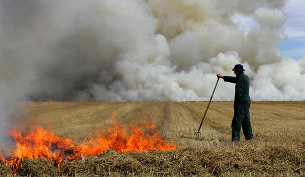 A farmer burns off stubble on a farm near Methven.