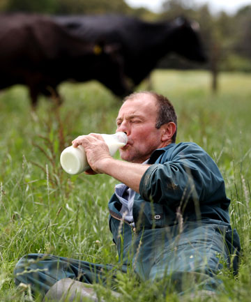 Co-owner of Bell Block Dolly's Milk operation Kevin Death enjoys some of his milk straight for the source.