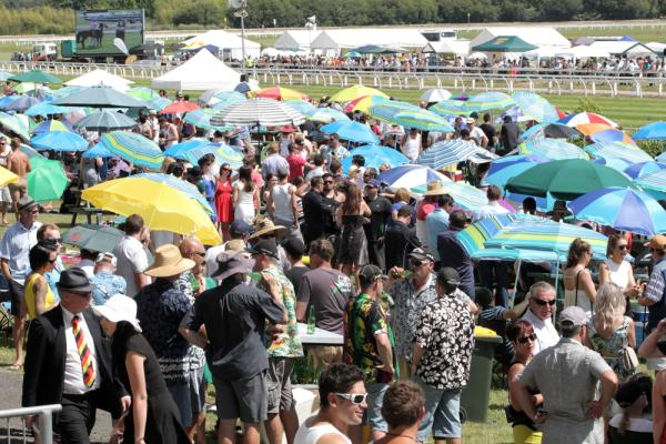 Waikato Times Gold Cup